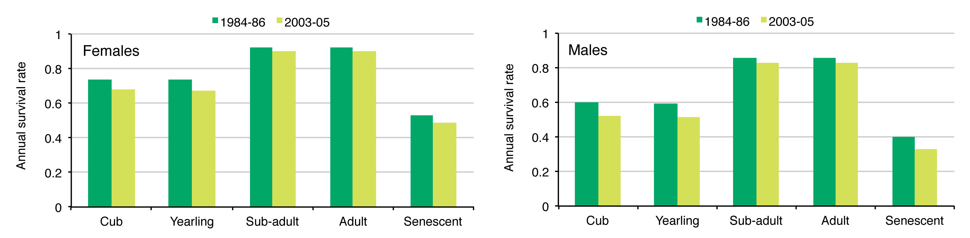 Figure 3. Comparison of annual survival rates of Polar Bears in the southern Hudson Bay subpopulation between 1984-86 and 2003-05 (adapted from Obbard et al. 2007).