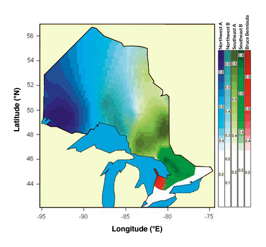 Figure 1. Map representing the 3 genetic groups of American Black Bears identified in Ontario. Blue: northwestern regional population; Green: southeastern regional population; Red: Bruce Peninsula population. The scale on the right indicates the probability that an individual would genetically correspond to the population it was sampled in. The two shades of blue and green respectively indicate the subgroups identified within the northwestern and southeastern populations (Source: Pelletier et al. 2012).