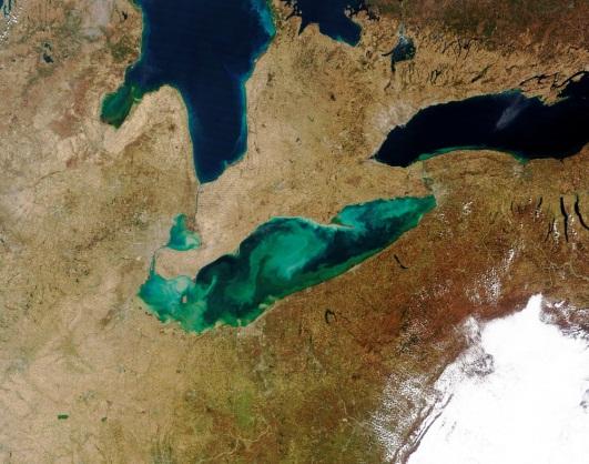 Figure 1. MODIS satellite image of Cyanobacteria bloom in Lake Erie. March 23, 2012 (credit: NASA).