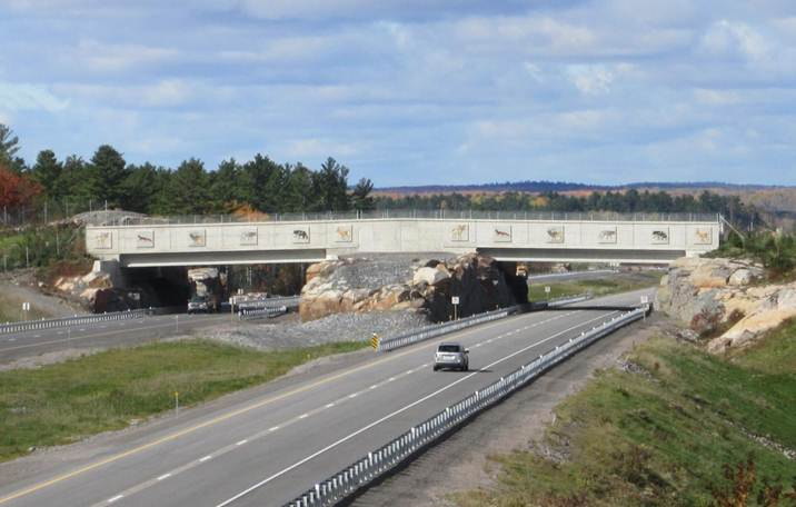 Figure 1.  Highway 69 wildlife overpass (credit:  Ontario Ministry of Transportation).