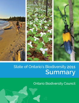 Cover page of SOBR Summary Report - photos: left, family walking on Lake Superior beach; centre, White Trilliums,; right, Elderberry Borer beetle