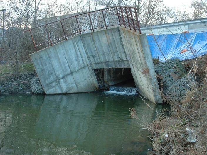 Figure 1. Western Creek before restoration.
